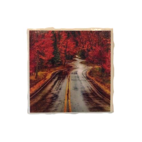 Door County Curvy Road Coaster