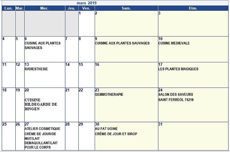 mars 2019 agenda.jpg