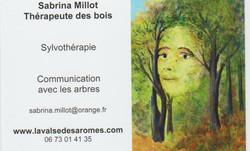 Thérapeute_des_bois_001