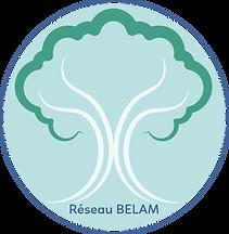 LOGO Re-seau BELAM (1).png