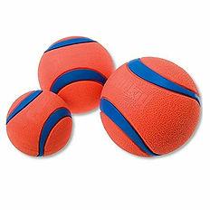 Chuck it ball 1.jpg