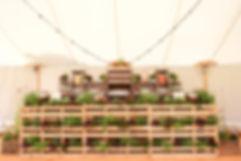 RR---Herbal-Bar.jpg