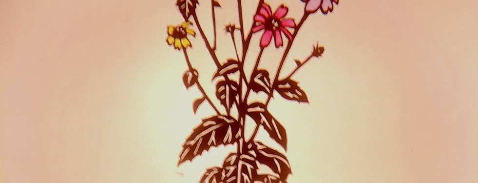 Onigiri & Flower