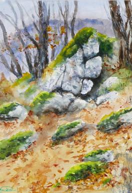 Rocher du vallon de Treilles