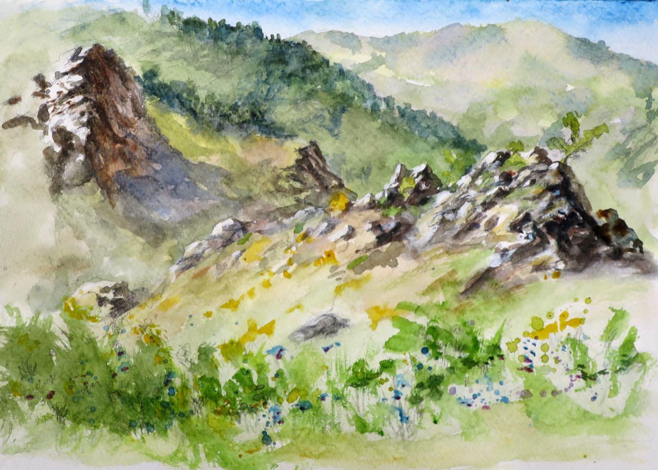 les collines au matin