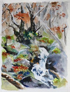 torrent d'automne