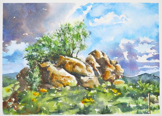 Rochers de Granite et Genets de Lozère
