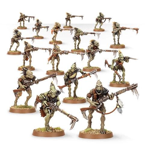 Kroot Carnivore Squad