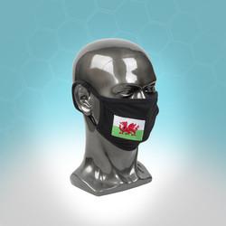 MasksWelsh