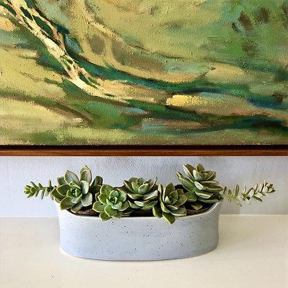 Succulent Cachepot