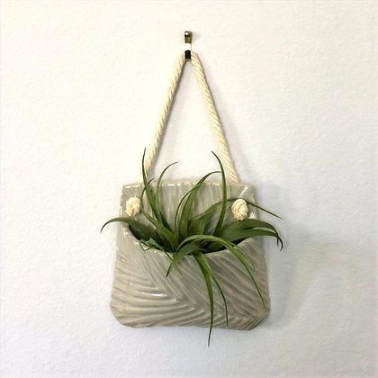 air plant hanging wall pocket