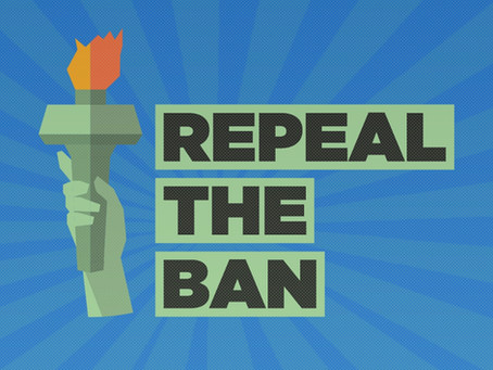 Ask Congress to Repeal the Muslim Ban and Support the NO BAN Act: