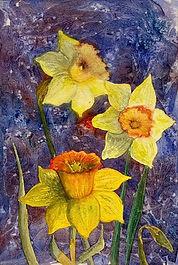Majestic Daffodils .jpg