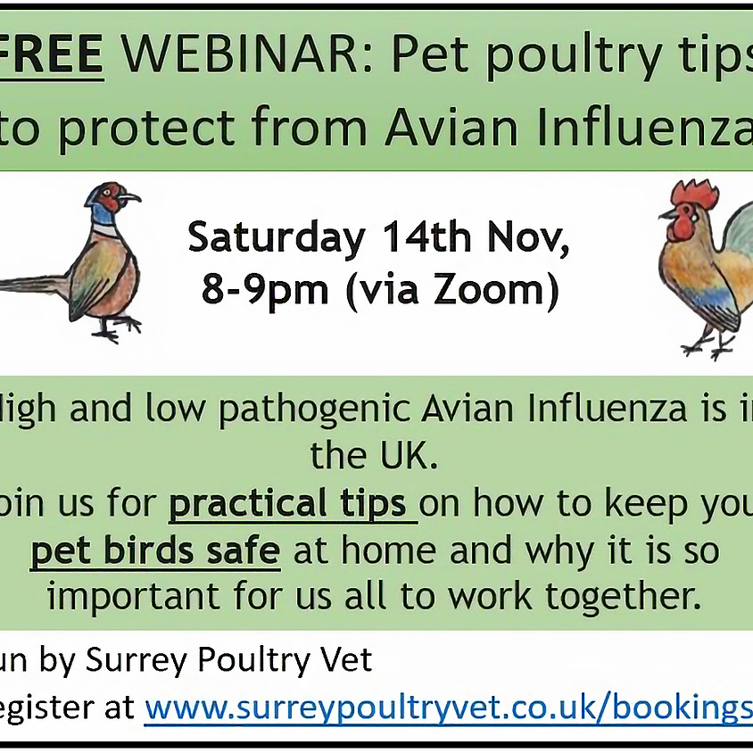 Pet poultry tips to protect from Avian Influenza (AI)