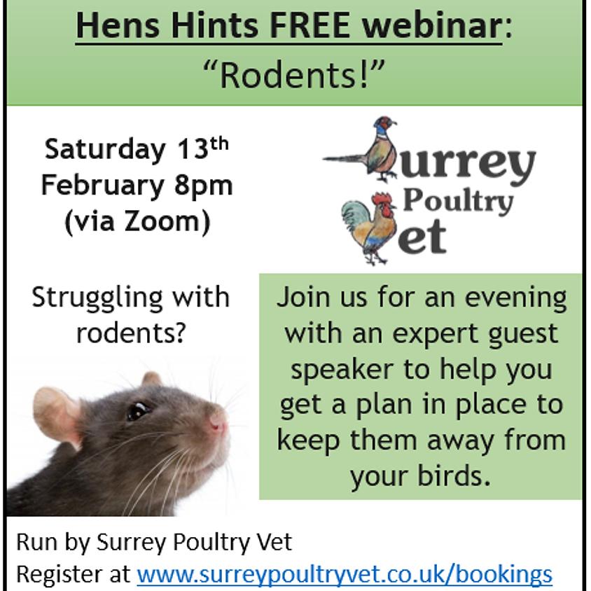 """""""Hens Hints"""" webinar - Rodents!"""