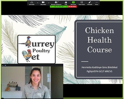 Virtual chicken health course screenshot