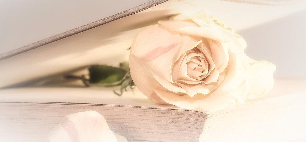 rose-2101475_edited_edited_edited_edited