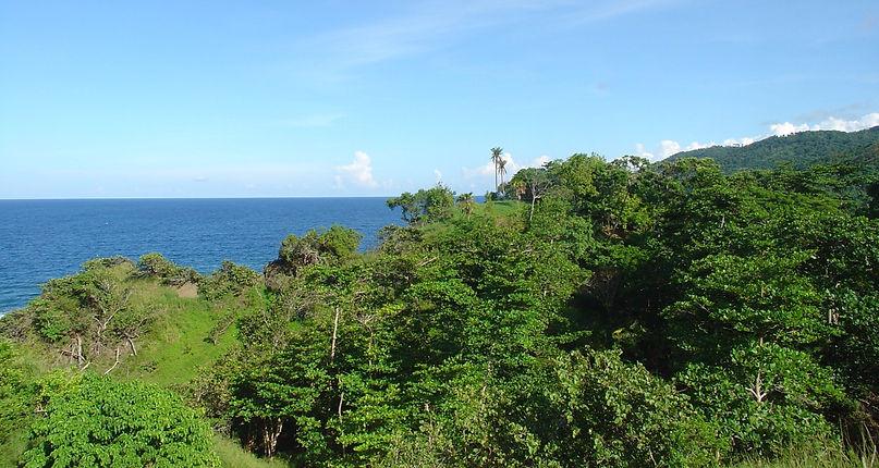 Bamboo Eco Resort Ocean View
