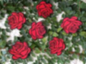Red Roses .jpg