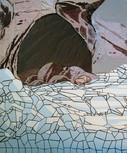 18 CLARKSON-ICE_CAVE 3.jpg
