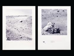 Mars Hillside & Mars Rock #1, 2005