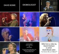 David Bowie Exobiologist, 2010