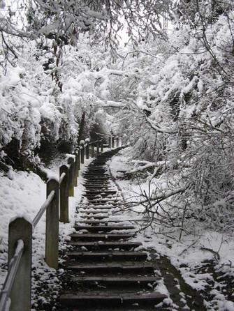 SchneeInStuttgartDez08_Treppe.JPG