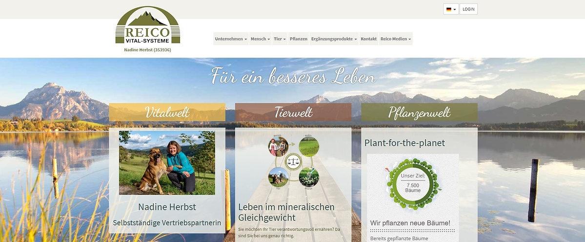 Reico-Startseite_schmal_edited.jpg