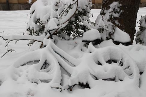 IMG_6973_Fahrrad im Schnee.jpg