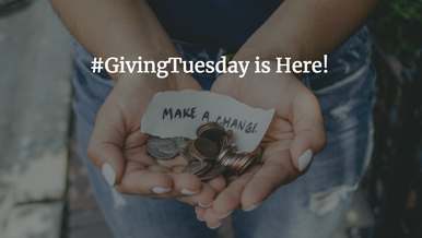 Sophia's Top #GivingTuesday Picks