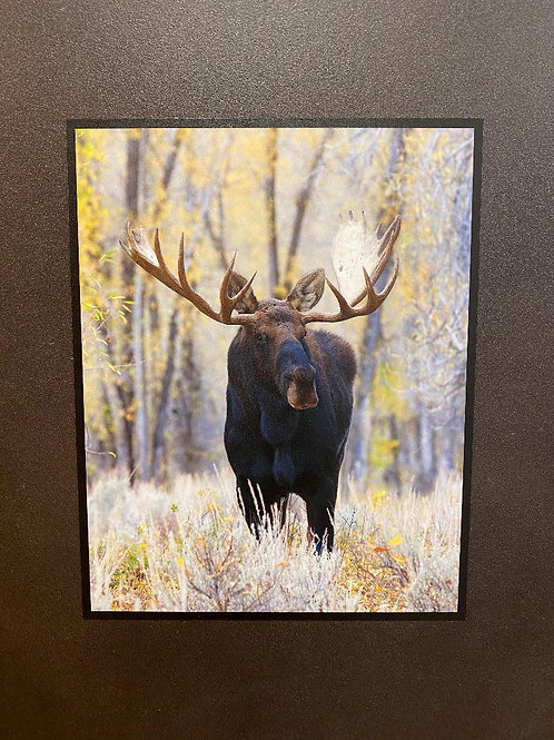 Natural Slate Picture Standing Moose