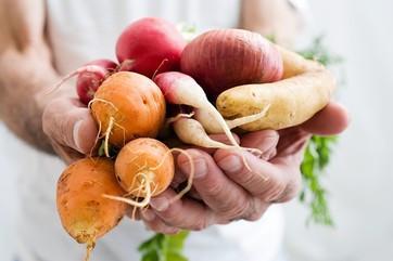 ירקות שורש יפים