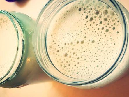 חלב גרעיני דלעת