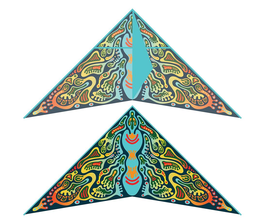 MaryamAziz-Kite-WinnerColor-1.jpg