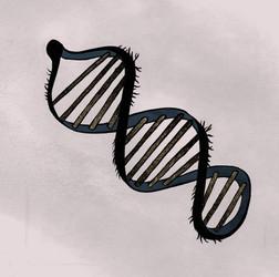 DNA-Correct.jpg