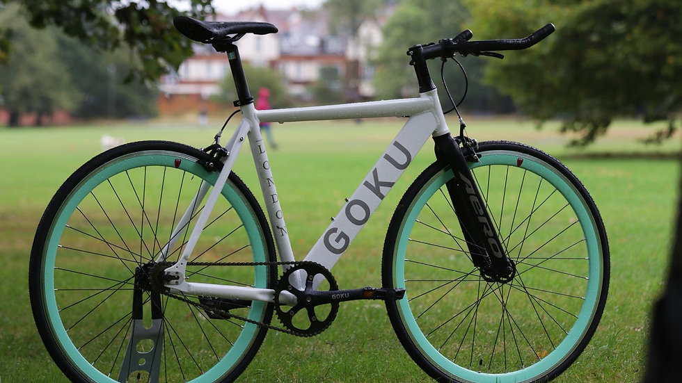 Goku Alloy Frame Pure White single speed fixed gear with bianchi green wheels