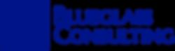 Blueglass Consulting logo