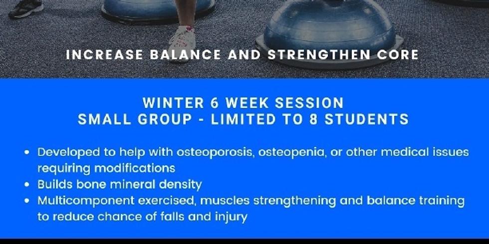 Bosu Ball Training Winter 6 week Session