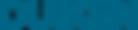logo_duiken_2012_donkerblauw.png