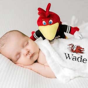 Welcome Wade!