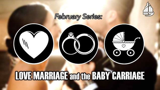Love Marriage and the Baby Carriage Seri
