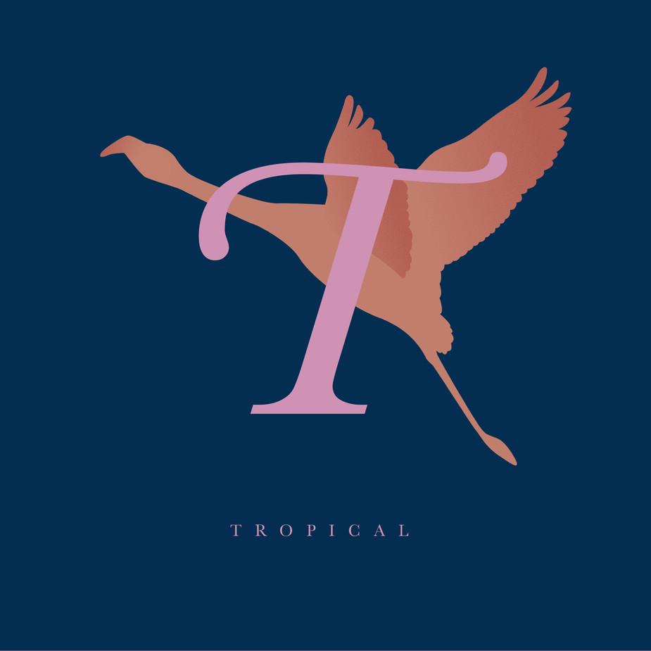 Tropical-  - Biennale Design 2015 OFF