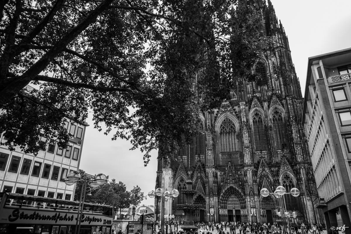 Catedral de Colonia/Koln
