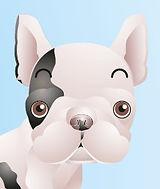 Dog.jpg