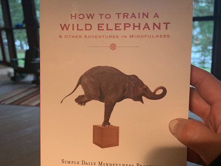 """""""How To Train A Wild Elephant"""" Mindful Activity Week 1 Using my non-dominant hand for ordinary tasks"""