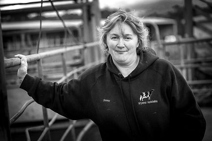 South West Victoria - Dairy Farming Crisis