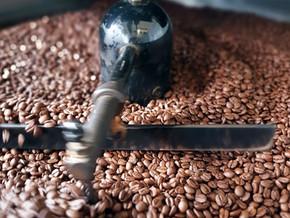 Kaffealliansen satser på lokale bedrifter