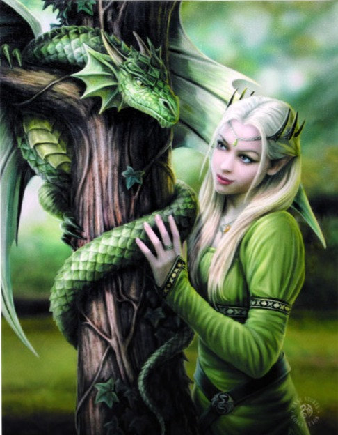 19x25cm Kindred Spirits Canvas Plaque by Anne Stokes