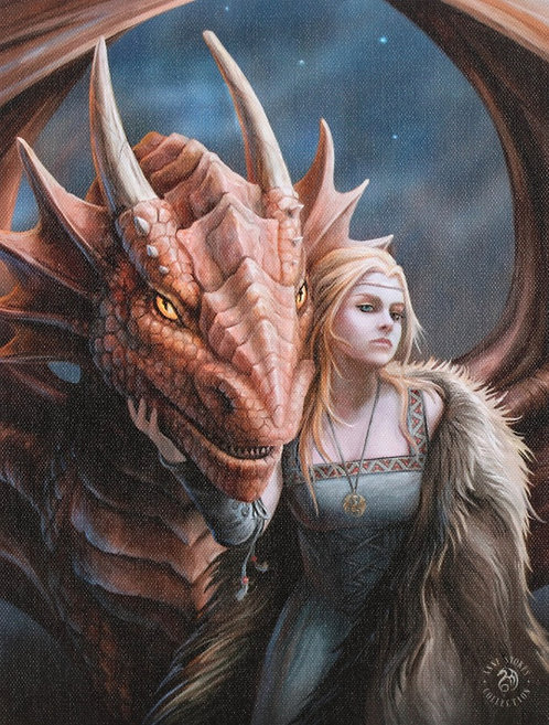 19x25cm Friend or Foe Canvas Plaque by Anne Stokes