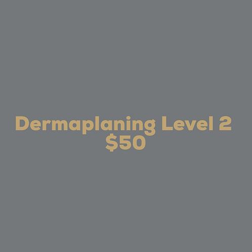 Dermaplaning Level 2